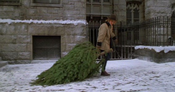when-harry-met-sally-tree.jpg